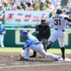 マルテ交代は大事を取っての措置 矢野監督「足の張り、抹消とかはない」 - プロ野球