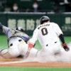 阪神G倒の舞台裏 なぜ坂本誠志郎は「神キャッチ」を成功させられたのか - プロ野球