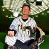 最後ぐらい自分で自分の力を見極めたい/鳥谷敬1 - プロ野球 : 日刊スポーツ